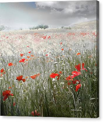 Canvas Print featuring the photograph Verano Tardio by Alfonso Garcia