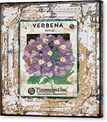 Verbena On Vintage Tin Canvas Print by Jean Plout