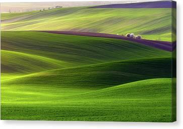 Verdant Land Canvas Print by Piotr Krol (bax)