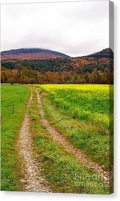 Vermont Farmer's Track Canvas Print by Vinnie Oakes