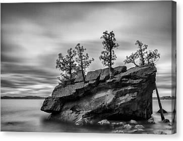 Vermont Lake Champlain Boulder Trees Black And White Canvas Print