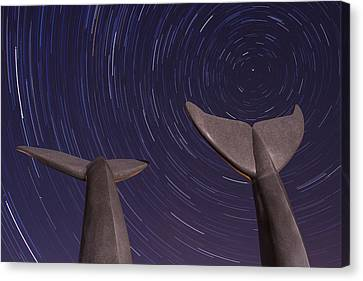 Vermont Night Landscape Star Trails Whale Tails Canvas Print by Andy Gimino