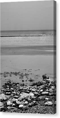Vertical Beach I Canvas Print by Pedro Fernandez