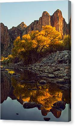 Vertical Fall Color Reflections Canvas Print by Dave Dilli