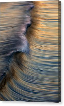 Vertical Wave  Mg0420 Canvas Print by David Orias