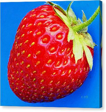 Very Strawberry  Canvas Print by Chris Berry