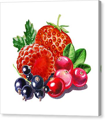 Very Very Berry Canvas Print