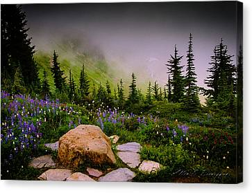 Vibrance And Clouds Canvas Print by Allen Biedrzycki