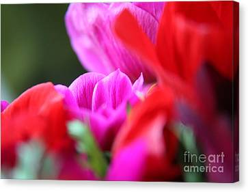 Canvas Print featuring the photograph Vibrant Bouquet  by Lynn England