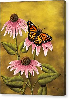 Coneflower Canvas Print - Viceroy by Rick Bainbridge