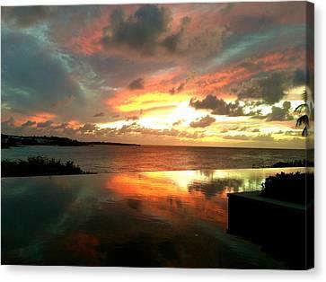 Viceroy Sunset Canvas Print