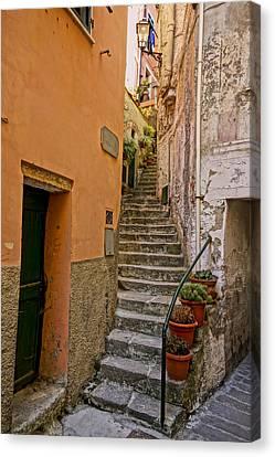 Vicolo Della Valle Riomaggiore Italy Dsc02537  Canvas Print by Greg Kluempers