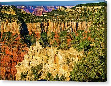 Canvas Print featuring the photograph View From Angel Point  by Bob and Nadine Johnston