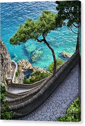 View From Capri.italy Canvas Print by Jennie Breeze