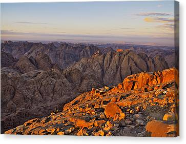 View From Mount Sinai Canvas Print by Ivan Slosar