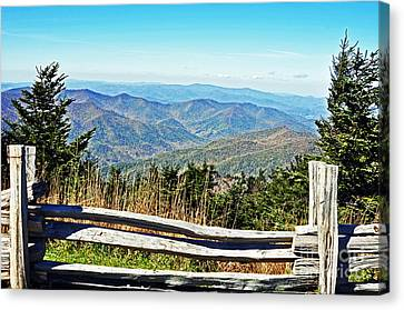 View From Mt. Mitchell Summit Canvas Print by Lydia Holly