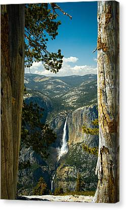 View From Sentinel Dome Canvas Print