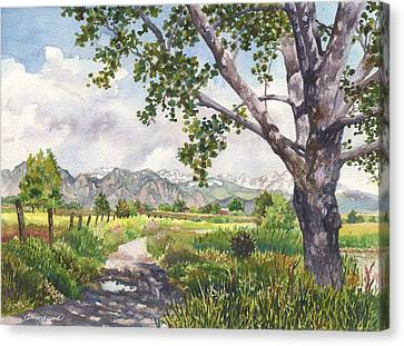 View From Stearns Lake Canvas Print