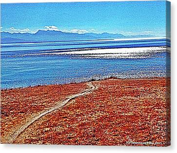 View From The Battery At Fort Ebey Canvas Print