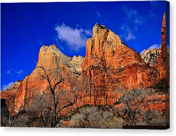 View From The Grotto Canvas Print