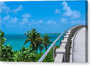View From The Old Bahia Honda Bridge Canvas Print by John M Bailey