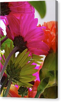 View From Underneath A Bouquet Of Flowers Canvas Print