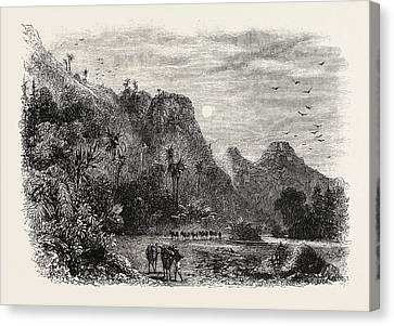 View In Cuba, 1870s Engraving Canvas Print