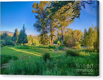 View Of Mt Gardner From Cottonwood Cottage Canvas Print