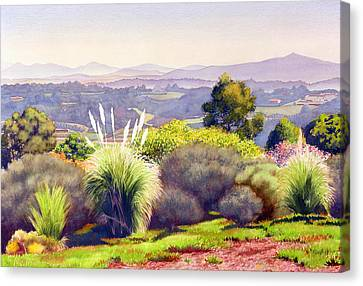 Eucalyptus Canvas Print - View Of Rancho Santa Fe by Mary Helmreich