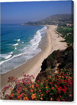 View Of Salt Creek Beach Canvas Print