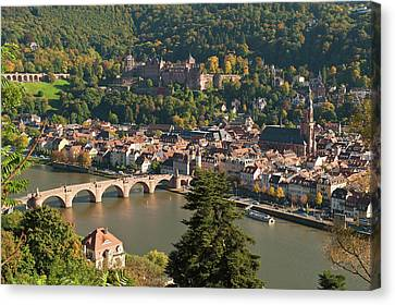 View Of The Alte Brucke Or Old Bridge Canvas Print by Michael Defreitas