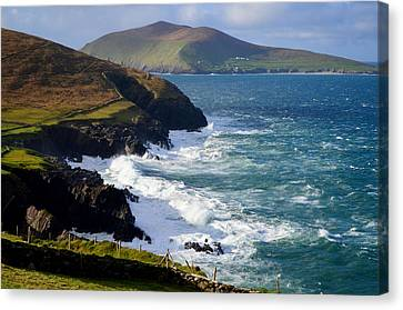 View Of The Blasket Island Canvas Print by Barbara Walsh