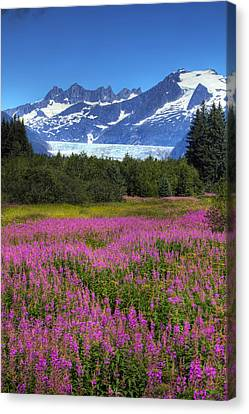 View Of The Mendenhall Glacier Canvas Print by Michael Criss
