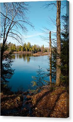 Moose River View From The Lock And Dam Trail  Canvas Print by David Patterson