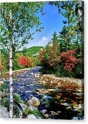 White River Scene Canvas Print - View Of The Swift River by Panoramic Images