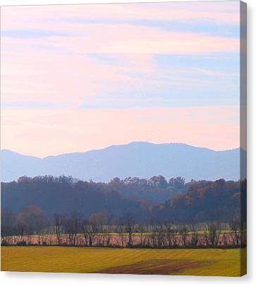 Canvas Print featuring the photograph View Of The Valley by Candice Trimble