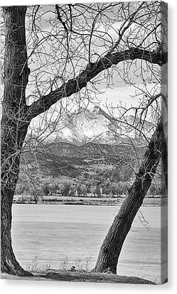 Winter Landscape Canvas Print - View Through The Trees To Longs Peak Bw by James BO  Insogna