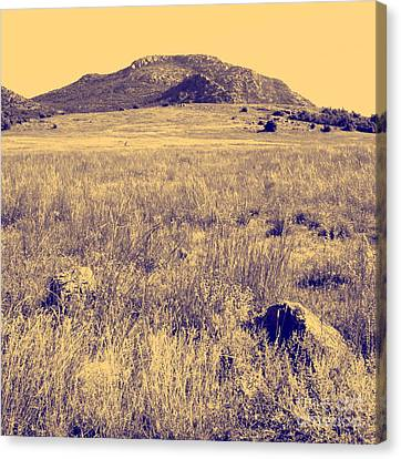 View To A Mountain Canvas Print by Mickey Harkins