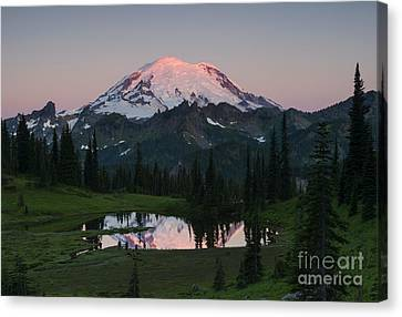 View To Be Shared Canvas Print by Mike Dawson