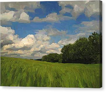 View To The North In Spaubeek Canvas Print by Nop Briex