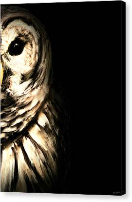 Vigilant In Darkness Canvas Print by Lourry Legarde