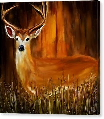 North American Wildlife Canvas Print - Vigilant by Lourry Legarde
