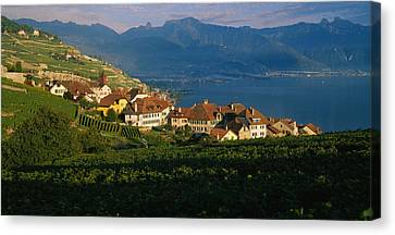 Village On A Hillside, Rivaz, Lavaux Canvas Print by Panoramic Images