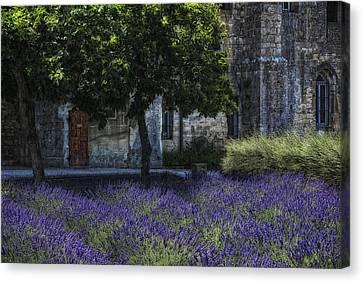 Vincents Garden Canvas Print by Joachim G Pinkawa