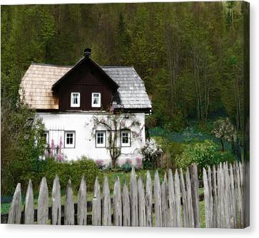 Vine Covered Cottage With Rustic Wooden Picket Fence Canvas Print