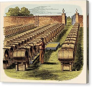 Vinegar Ground Canvas Print
