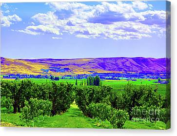 Vinehart Canvas Print