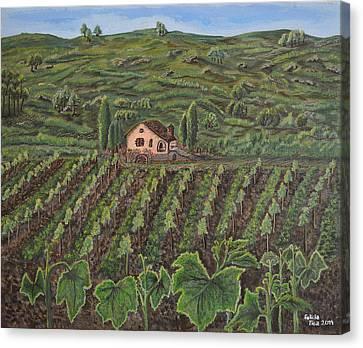 Vineyard In Neuchatel Canvas Print by Felicia Tica