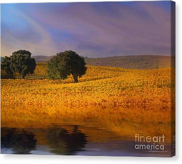 Vineyard Magic Canvas Print by Stephanie Laird
