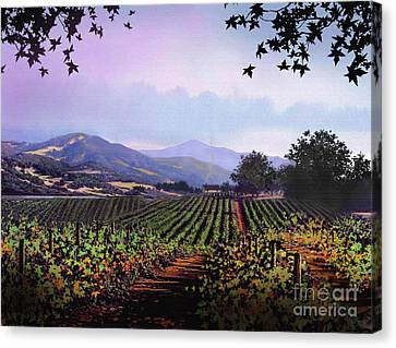 Vineyard Napa Sonoma Canvas Print by Robert Foster